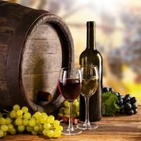 甲州のワイナリーで日本ワインの魅力を体感