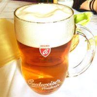 ビールの本場チェコで楽しむ大人の工場見学