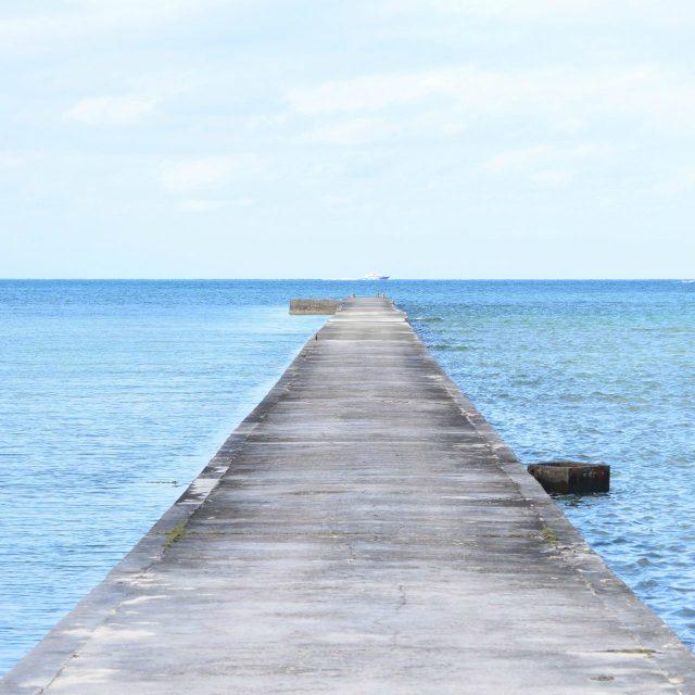 石垣島からの日帰り旅も愉しい黒島の絶景