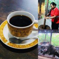 バリ島で味わう世界一高価なコーヒー